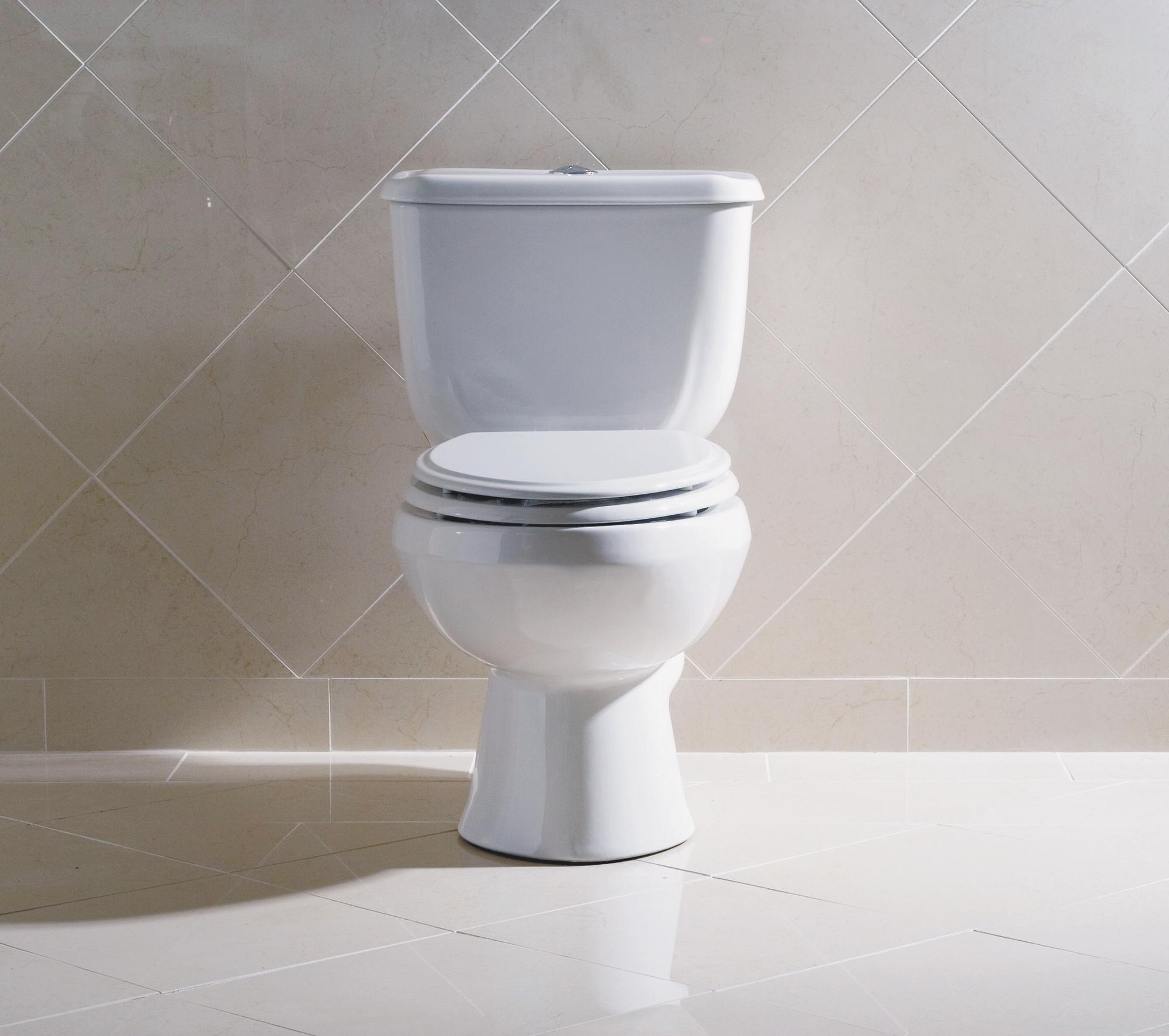 Briggs Toilet Review: 7006-130 Altima Elongated Toilet Express